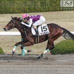 次走の狙い馬(12月21・22日 栗東組)