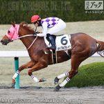 次走の狙い馬(12月14・15日 栗東組)