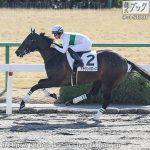 次走の狙い馬(1月11・12・13日) 栗東組