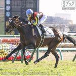 次走の狙い馬(1月19日) 美浦組