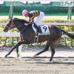 次走の狙い馬(2月22・23日 栗東組)