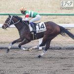 次走の狙い馬(2月15・16日 栗東組)