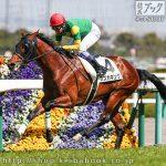 次走の狙い馬(3月7・8日 栗東組)