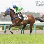 次走の狙い馬(2月29・3月1日 栗東組)