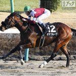 次走の狙い馬(4月4・5日 美浦組)