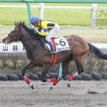 次走の狙い馬(3月14・15日 美浦組)