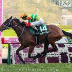 第17回 福島牝馬S 回顧