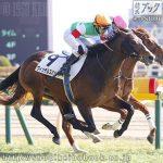 次走の狙い馬(5月16・17日 美浦組)