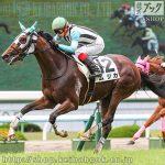 次走の狙い馬(5月24日 栗東組)