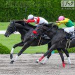 次走の狙い馬(7月11・12日 栗東組)