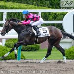 次走の狙い馬(7月4・5日 栗東組)