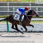 次走の狙い馬(9月19・21日 栗東組)