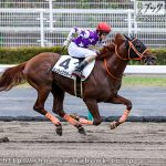 次走の狙い馬(9月26日 栗東組)