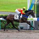 次走の狙い馬(9月13日 栗東組)