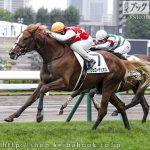 次走の狙い馬(10月3・4日 美浦組)