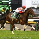 第25回 東京スポーツ杯2歳S 回顧
