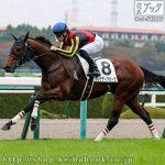 次走の狙い馬(11月7日 栗東組)