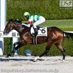 次走の狙い馬(11月14・15日 栗東組)