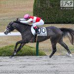 次走の狙い馬(12月12・13日 栗東組)
