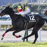 次走の狙い馬(1月23・24日 美浦組)