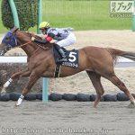 次走の狙い馬(1月5日 美浦組)