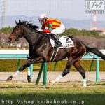 次走の狙い馬(12月26日 栗東組)