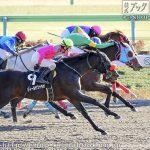 次走の狙い馬(1月30・31日 美浦組)