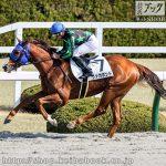 次走の狙い馬(2月20・21日 栗東組)