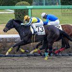次走の狙い馬(2月27・28日 美浦組)