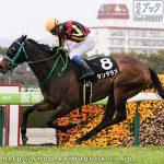 次走の狙い馬(3月6・7日 栗東組)