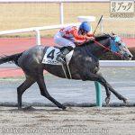 次走の狙い馬(3月27日 栗東組)