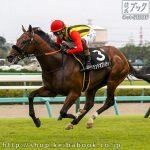 次走の狙い馬(5月8・9日 美浦組)