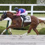 次走の狙い馬(5月15・16日 美浦組)