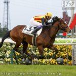 次走の狙い馬(6月19・20日 美浦組)