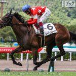 次走の狙い馬(8月14・15日 栗東組)