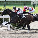 藤原有貴 8月8日の推奨馬