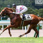 次走の狙い馬(8月28・29日 栗東組)