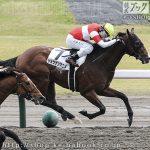 次走の狙い馬(10月2・3日 美浦組)
