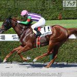 次走の狙い馬(10月9・10日 栗東組 )